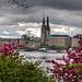 City View - Die kühle Schöne ... (180°)