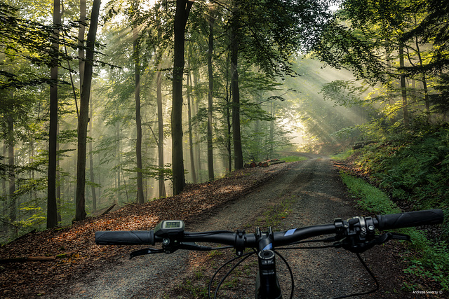 Bike Tour Spessart