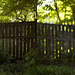 see through fence - diptych
