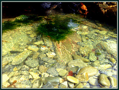 Another rockpool