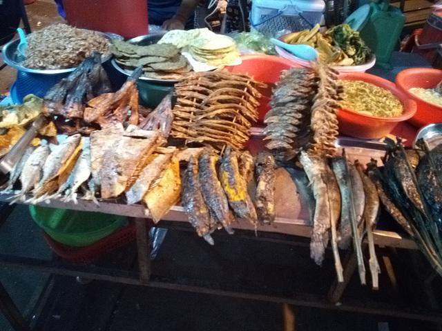 Étalage marin / Various fish display
