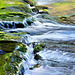 River Manifold  /  July 2015