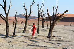 Namibia, In the Dead Forest of the Sossusvlei