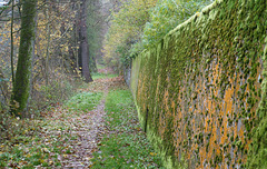 Weg an der Waldnaab