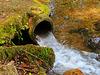 1 (55)...austria water