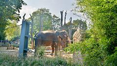 Wilhelma Zoo-Stuttgart
