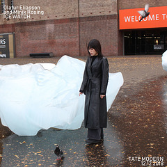 London - Ice Watch - Olafur Eliasson & Minik Rosing - 12.12.2018 - h