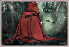 Le comportement est le miroir où chacun montre sa véritable image
