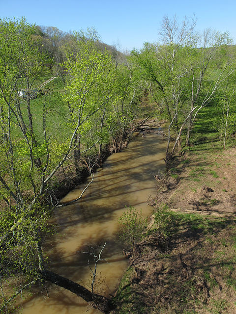 Good view of the always-pudding-looking waters of famous Tygart Creek — famous for its uselessness!