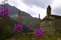 Chapelle du hameau l'écot (Hte Maurienne)