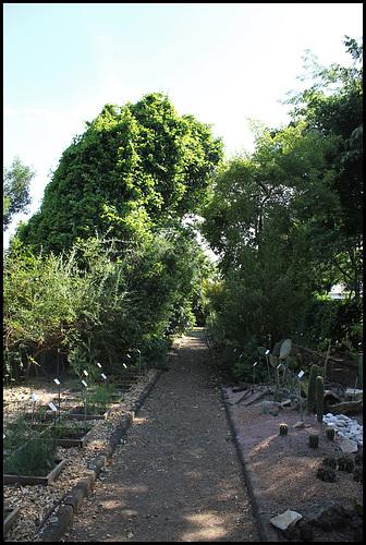 Jardin botanique de La Charme -63 (2)