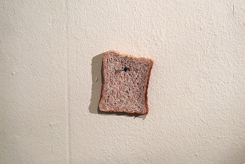 toast-1200517-co-23-01-15