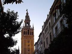 Glockengeläut der Giralda in Sevilla