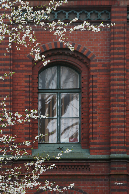 Window in Spring