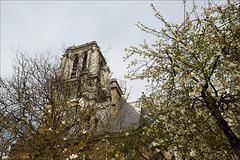 Paris, Notre Dame en blanc
