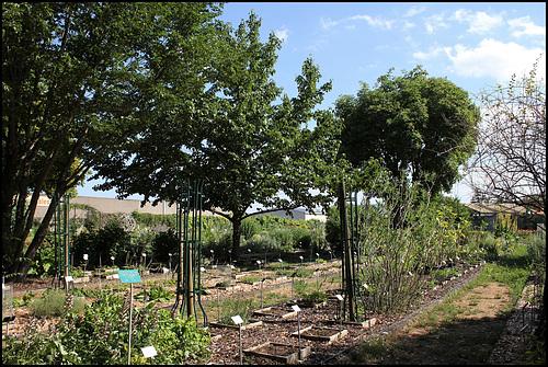 Jardin botanique de La Charme -63 (3)