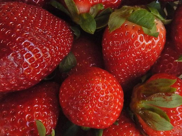 Es ist Erdbeerenzeit