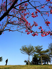 Spring is coming ~