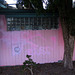 Pink Wall on 40th Streeet Oakland (3033)