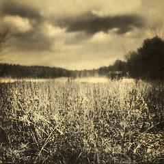 reservoir field