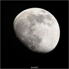 Rising Moon   /   April 2020