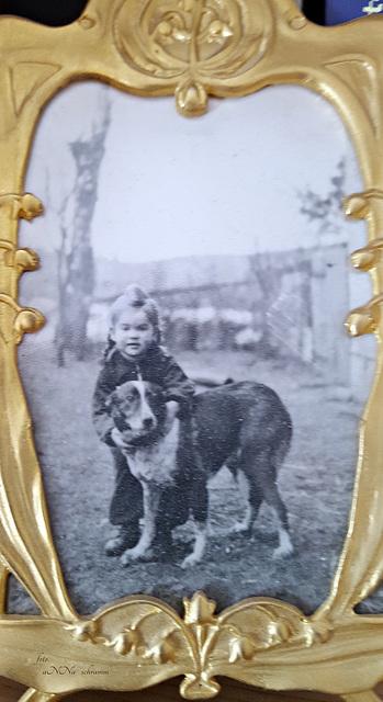 ...  in Pommern mit Tulli dem Hund