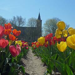 Nederland - Limmen, Protestantse kerk