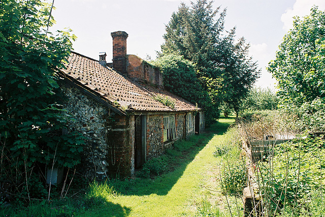 Gardens of Coney Weston Hall, Suffolk