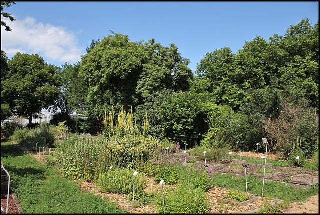 Jardin botanique de La Charme -63 (6)