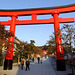 Torii, Fushimi Inari-taisha