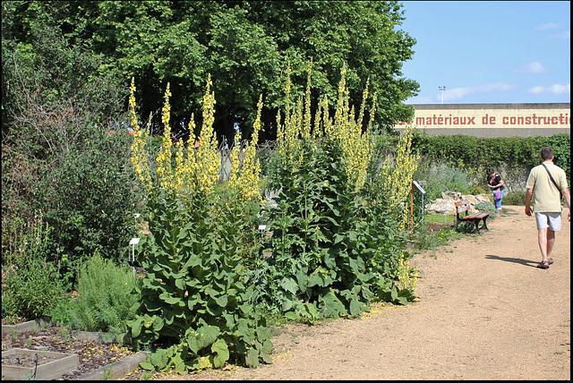Jardin botanique de La Charme -63 (8)