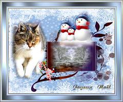 Gourmande vous souhaite un Joyeux Noël ! !