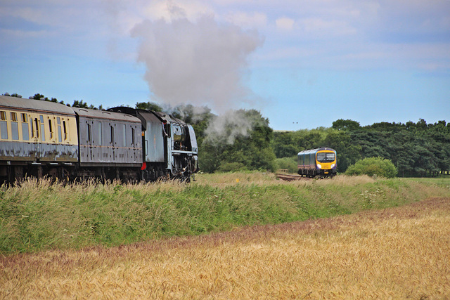 Steam meets Diesel ~ LMS class 8P Coronation 46233 DUCHES OF SUTHERLAND and  BR class 185 no 185 134 TransPennine Express pass nr Willerby Carr crossing