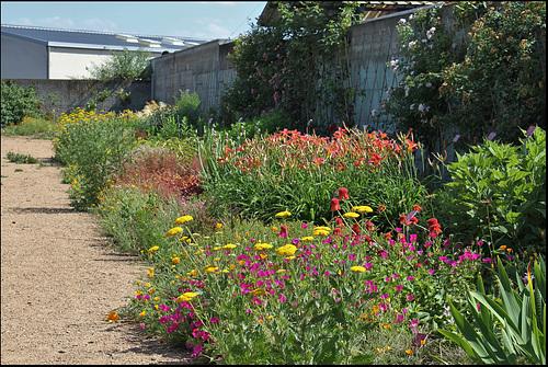Jardin botanique de La Charme -63 (9)