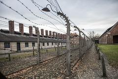 Auschwitz Birkenau-25