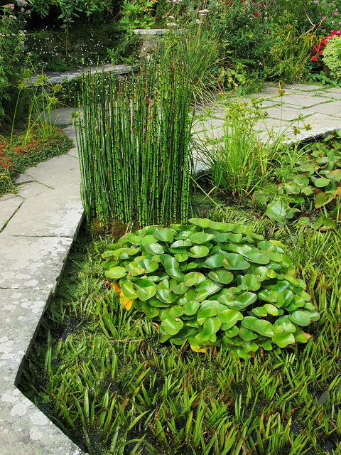 Sunk Garden, Great Dixter.