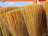 sunny brooms