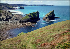 Porthcadjack at low tide.