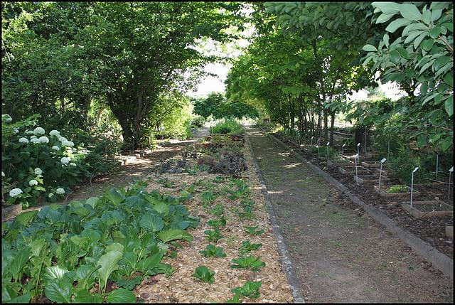 Jardin botanique de La Charme -63 (13)