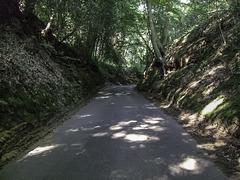 Sheephatch Lane Tilford Surrey