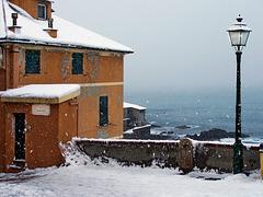Nevicata storica a Boccadasse - (577)