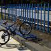 monopattino e bici