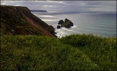 Crane Islands, Basset Cove, North Cliffs, Cornwall