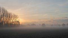 Morgenrot und Morgennebel