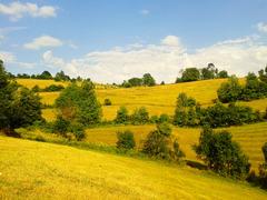 The hillside ideal for walking