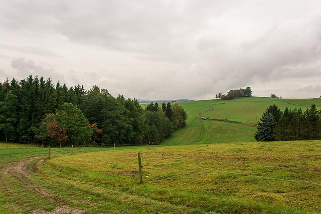 Feldweg nach Burkhardtsdorf und Meinersdorf