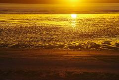 Soleil à la mer !
