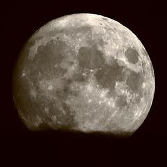 EOS 90D Peter Harriman 19 44 45 73903 moon dpp