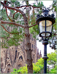 Barcellona : La Sagrada Familia vista da Plaça de Gaudí