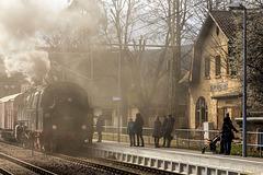 Viel Dampf in Blankenburg - HFF!